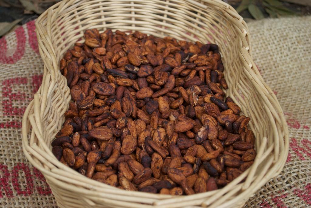 Beans undergo a fermenting process