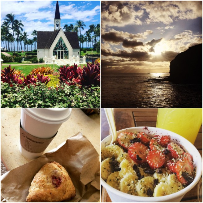 Upper Left: Gorgeous day in Wailea Upper Right: Sunset over West Maui Bottom Left: Delicious lavender-coconut milk latte and Vegan Strawberry-Lime Scone by Wailuku Coffee Company Bottom Right: Da Kine Acaí Bowl w/ Cacao Nibs and Chocolate Breadfruit Pudding. Had local honey on the top of mine, but otherwise vegan. Pineapple Ginger Lemonade, both from WowWow Lemonade in Kihei.